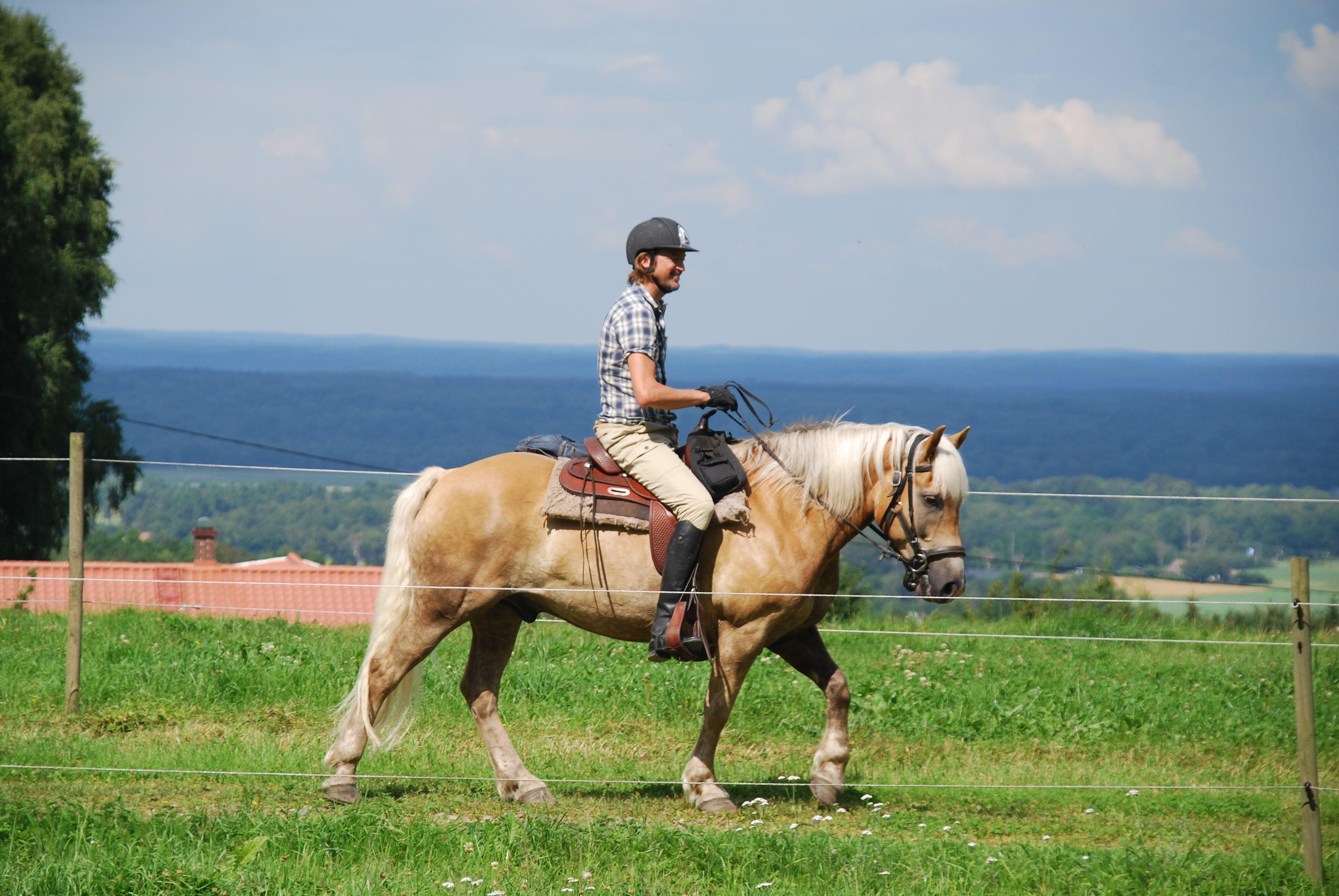 © Anna Lewijn, Söderåsen Pony Trekking