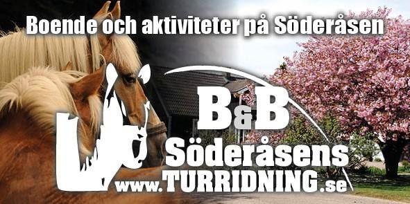 © Anna Lewijn, Söderåsens Turridning