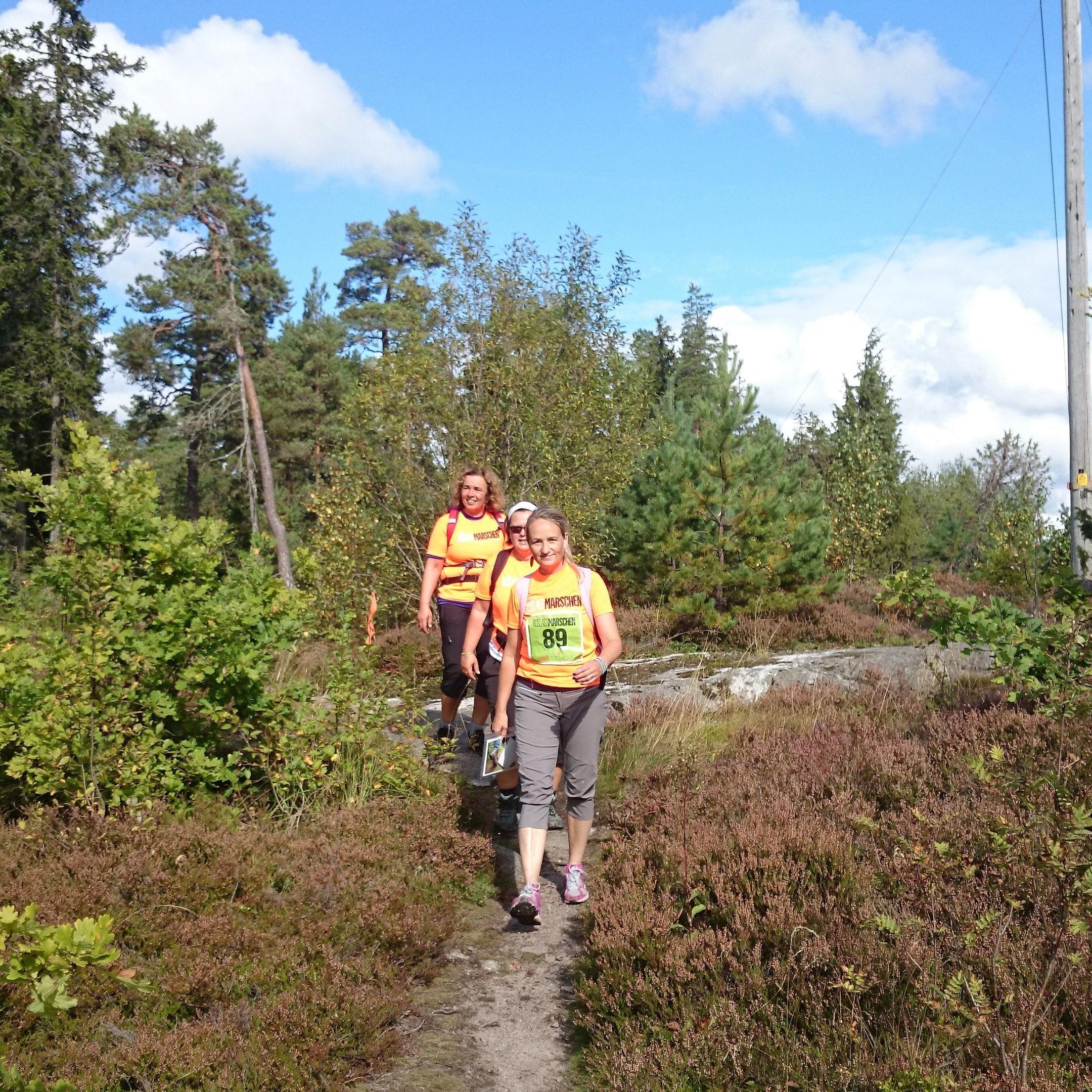 Nya Roslagsmarschen - Hike on the Roslagsleden Trail - 17 th of September