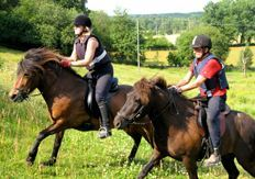 Spelmansgården - Riding, riding school and camps with Icelandic Horses