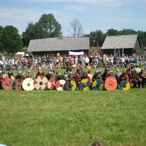 Vikingamarknaden 25-27 juli: 3-dagars entrépass
