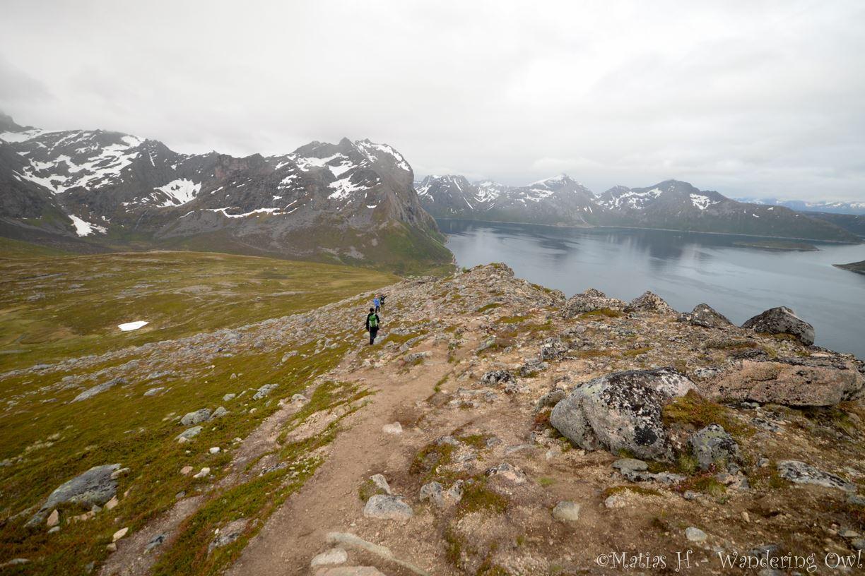 A Night Walk on the Wild Side – a hiking tour on Kvaløya – Wandering Owl