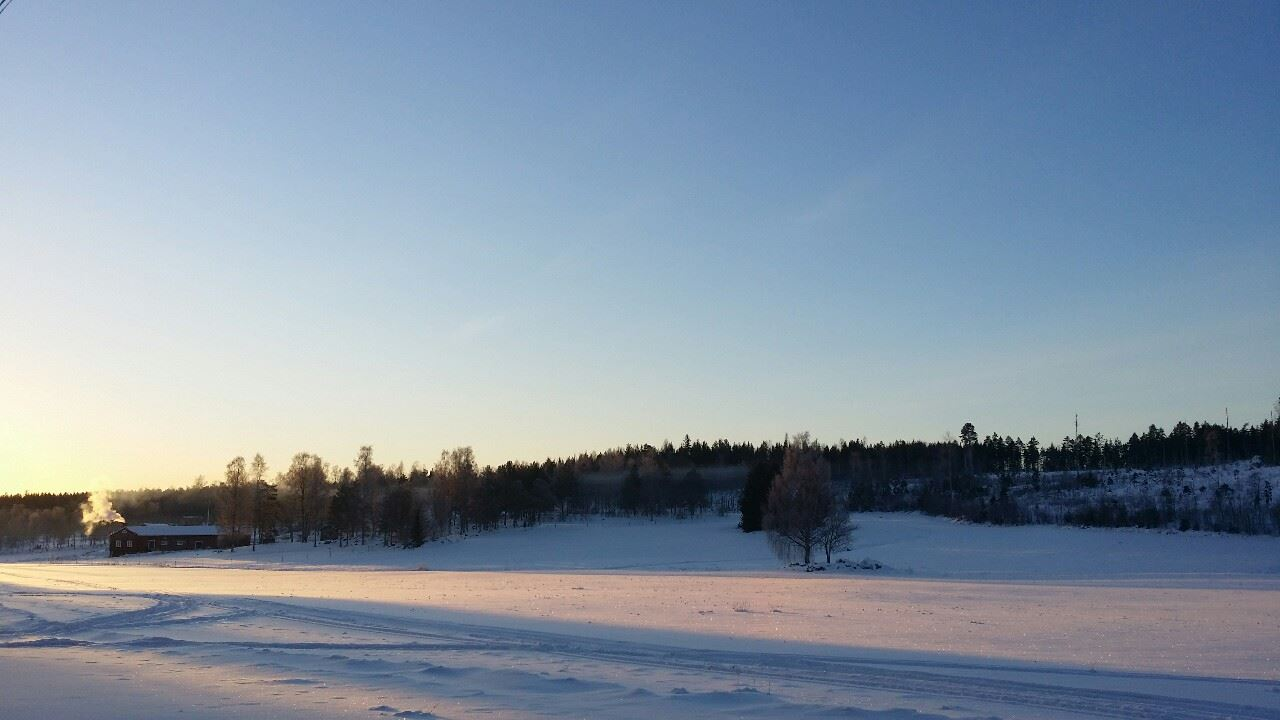 Färdsjö farm