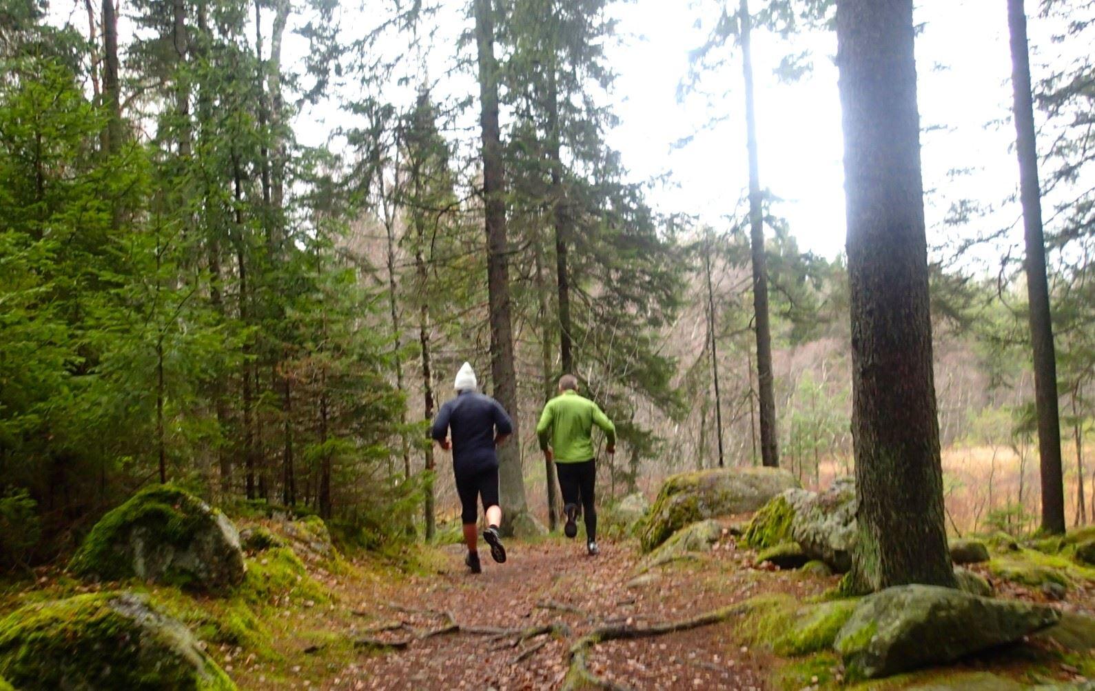 Traneving Outdoor - vandringspaket på Roslagsleden
