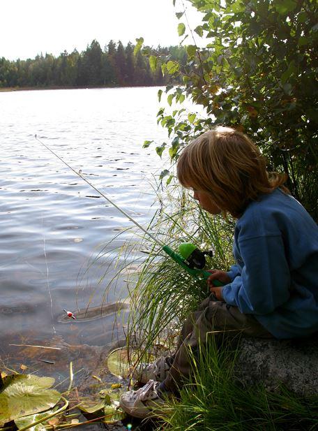 Järbo Fiskevårdsområde