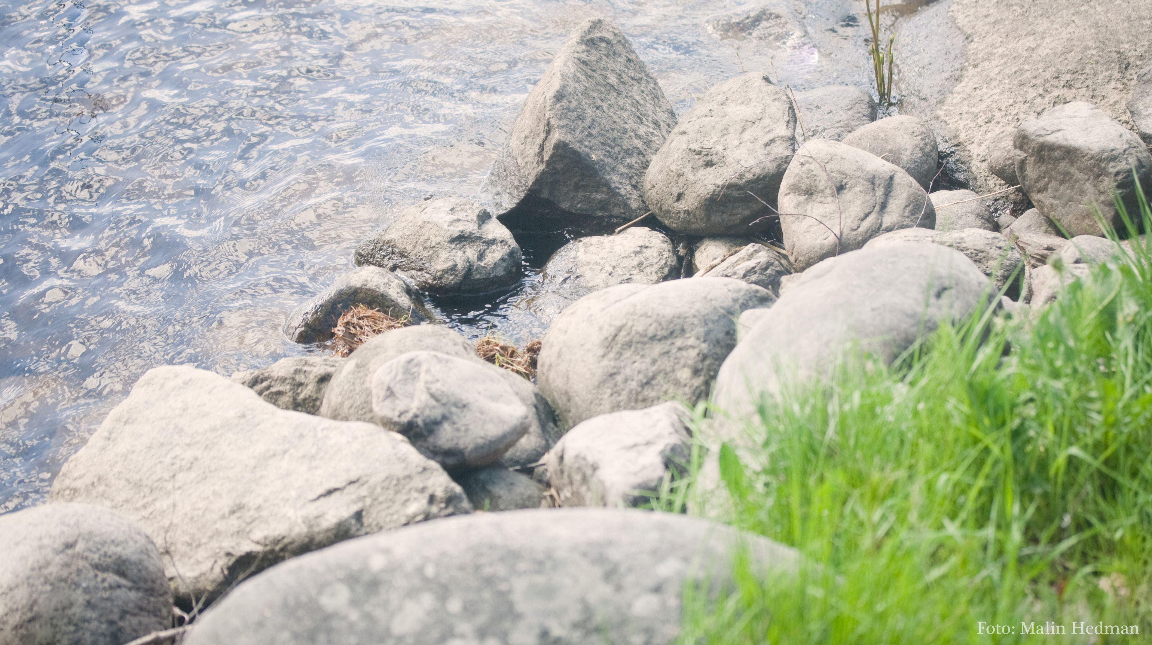 Skellefte älvs gamla fåra
