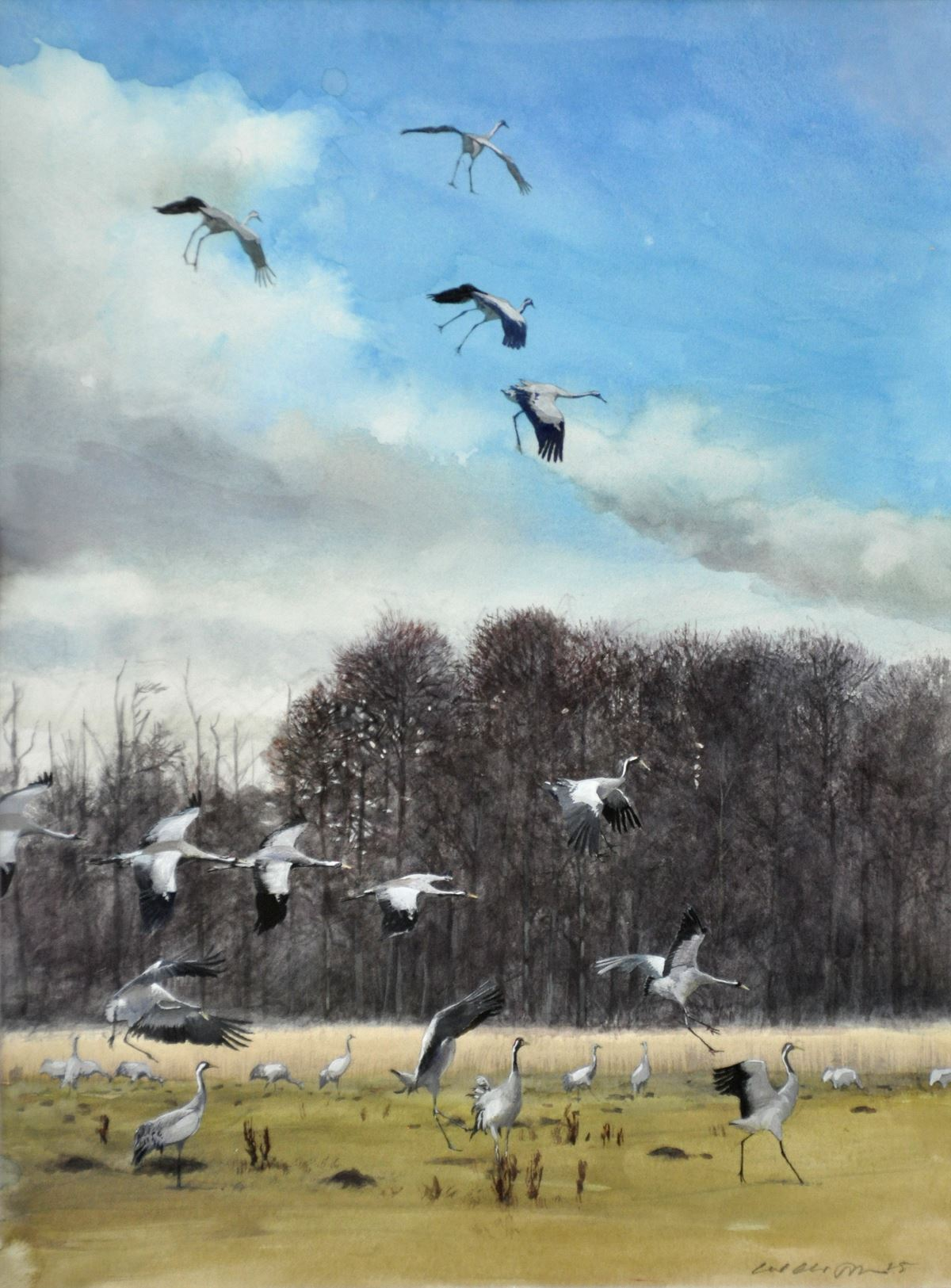 Utställning - Carl Christian Tofte