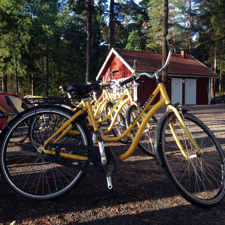 Fahrräder für Erwachsene