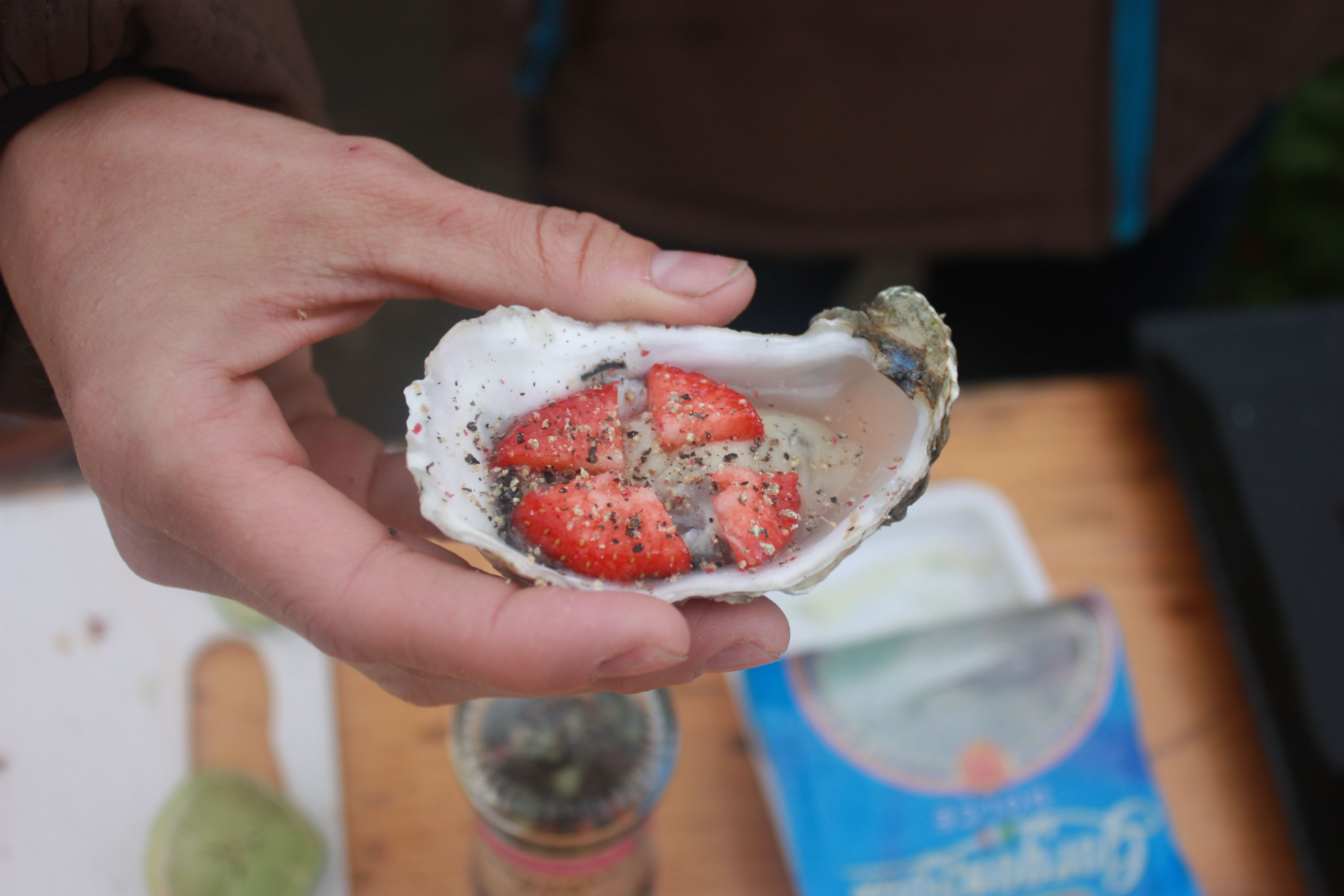 Club Fano Oyster Safaro, a great gastronomic experience in the Wadden Sea National Park.