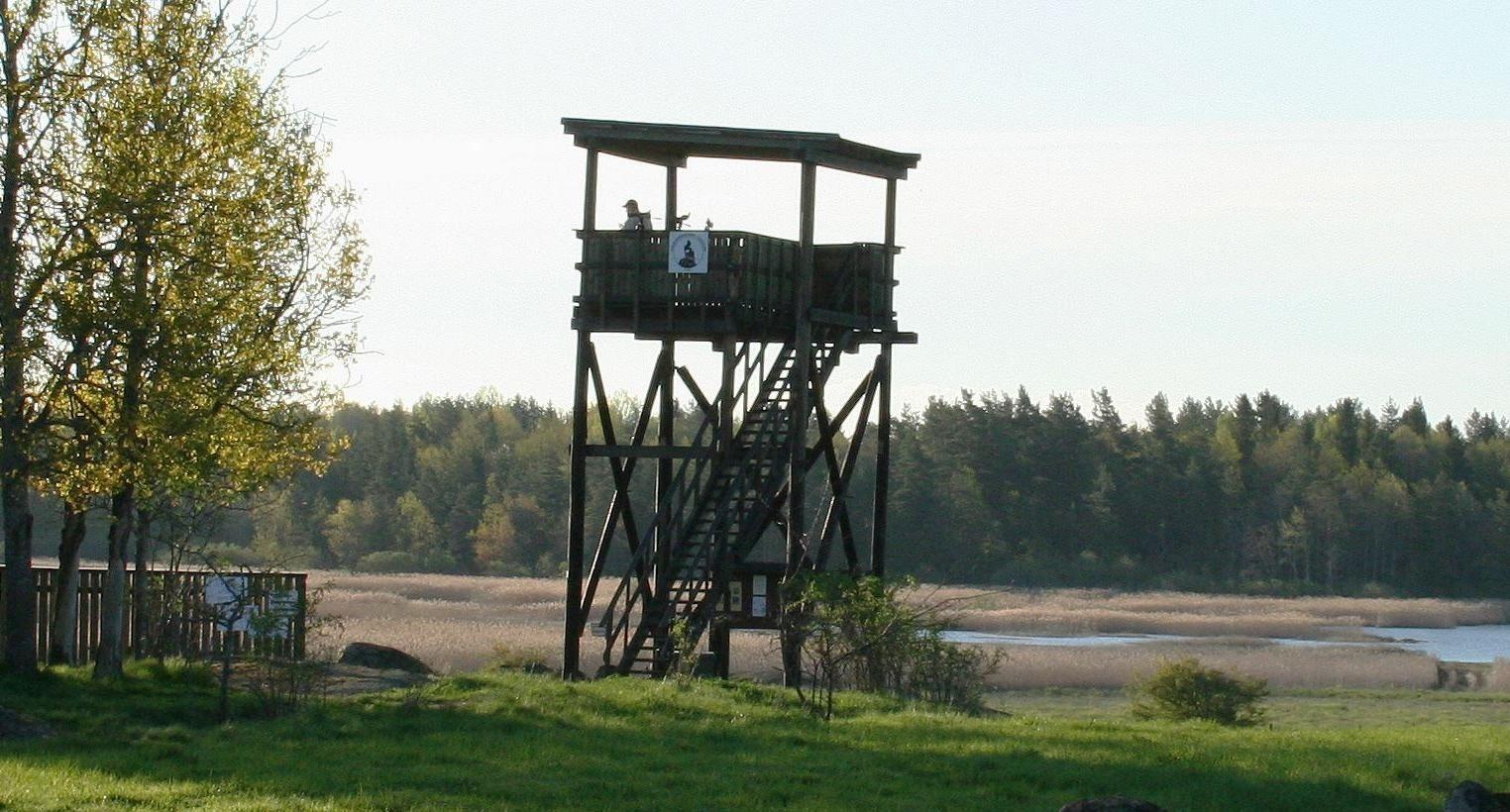 Målsjöns fågeltorn