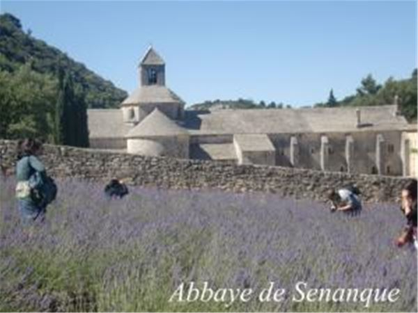 Fontaine de Vaucluse/Gordes/Roussillon (lavender tour ) - Demi-Journée - Provence Travel