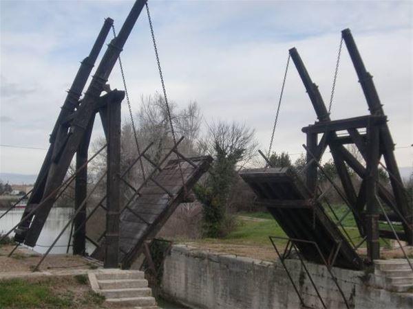 Pont du Gard/Arles/Les Baux de Provence (stop at A.O.C olive oil mill)/St Rémy de Provence+ provencal market - Provence Travel