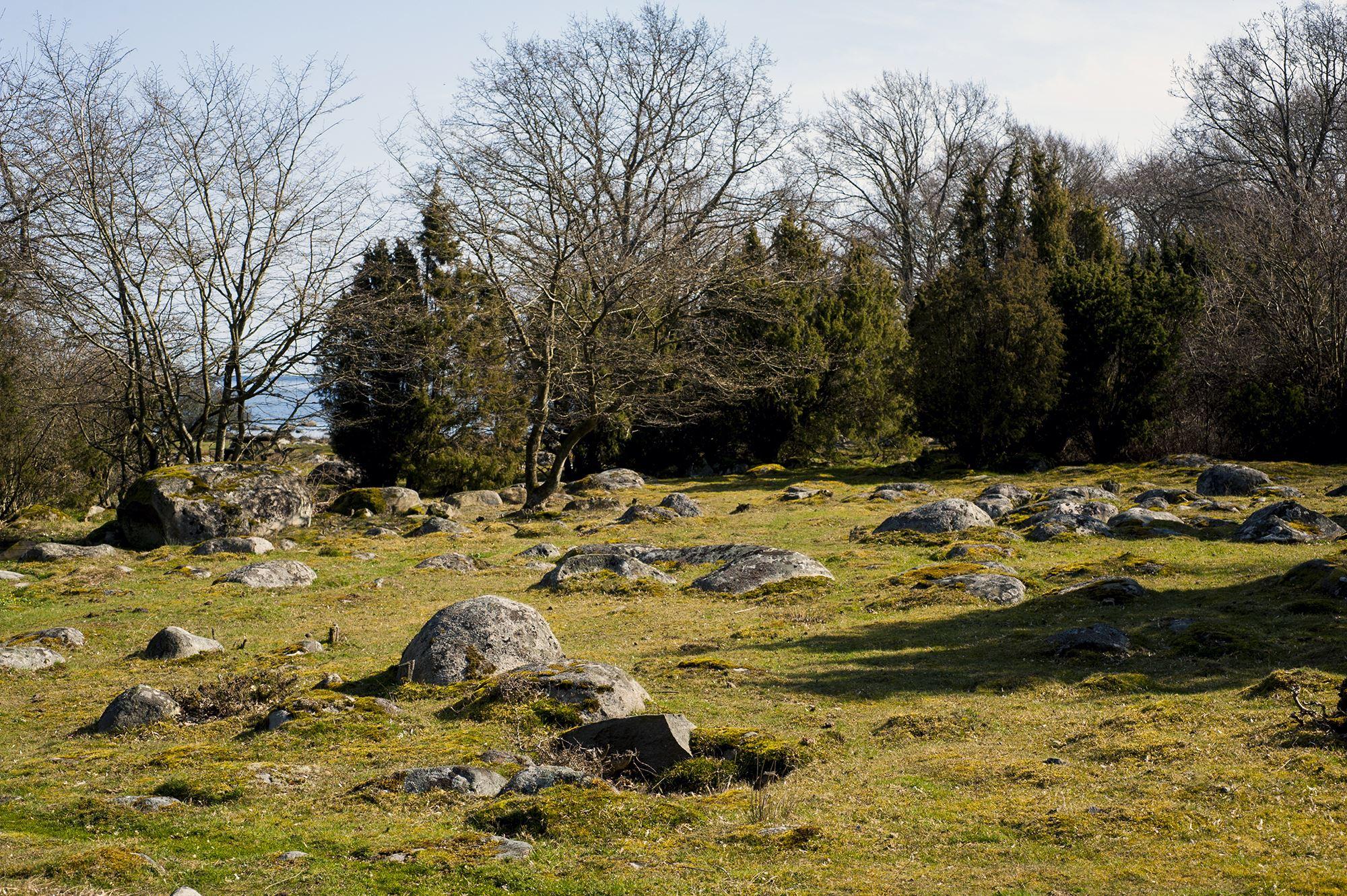 Robert Petersson, Spraglehall - Naturschutzgebiet