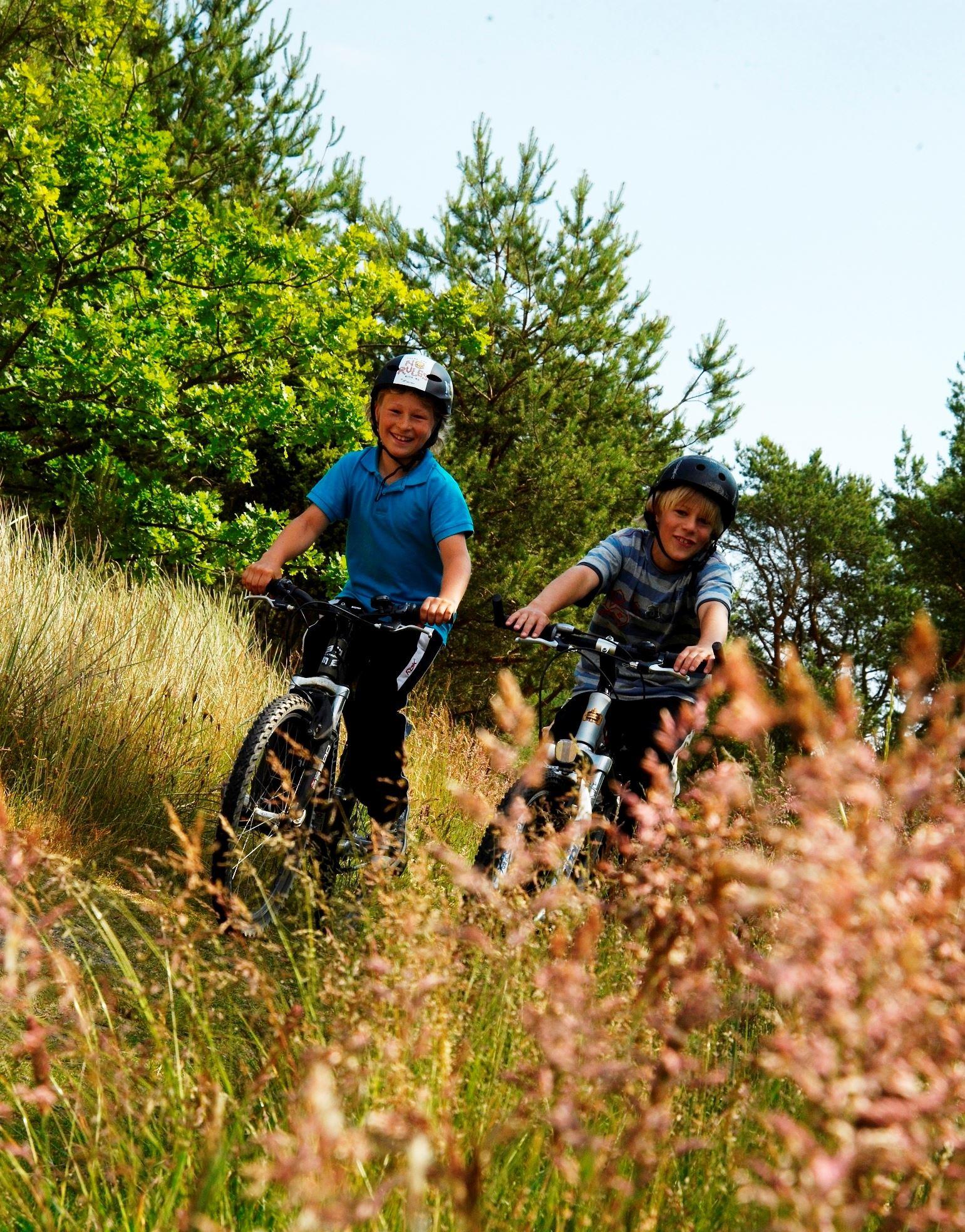 Bike rental - Hälleviks havsbad