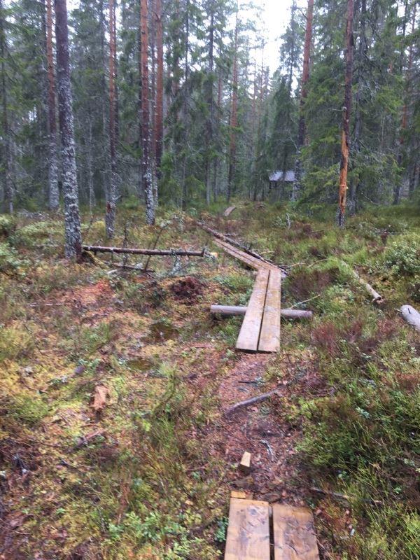 Naturstigen i Lindesnäs