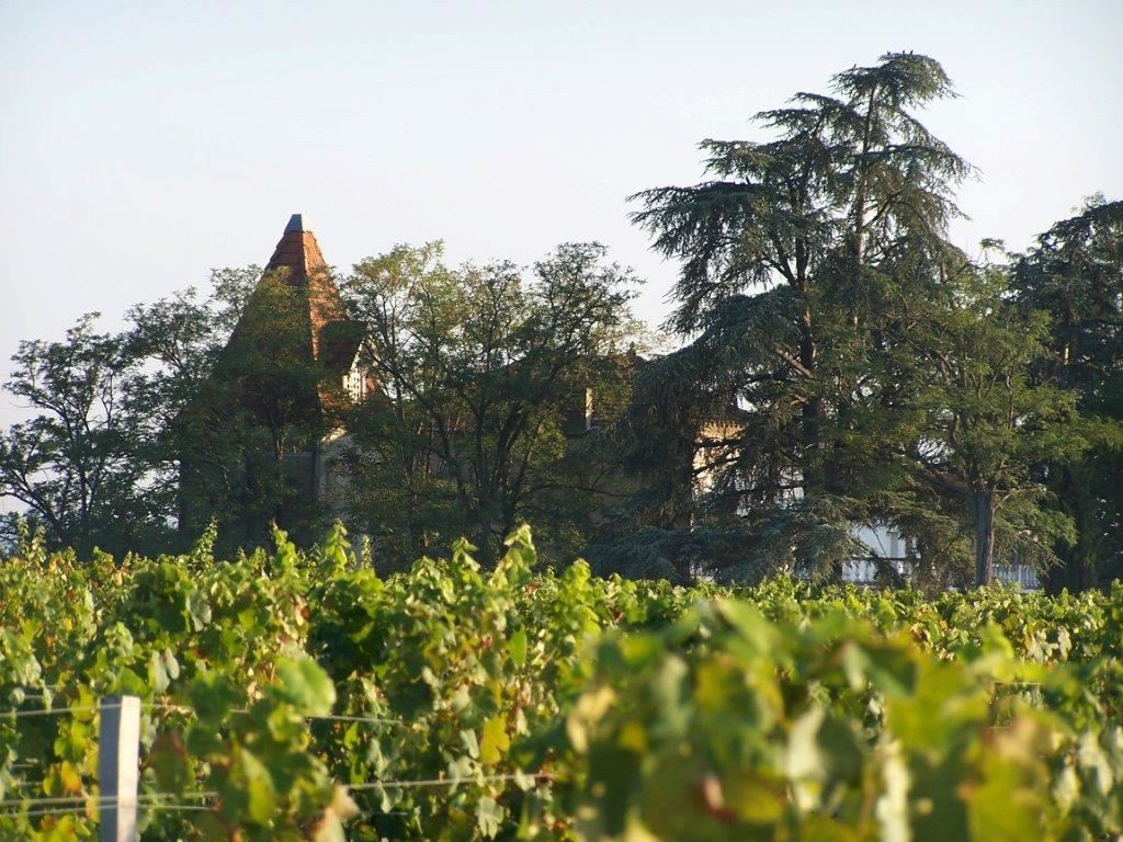 Fronton: the vineyards of Toulouse
