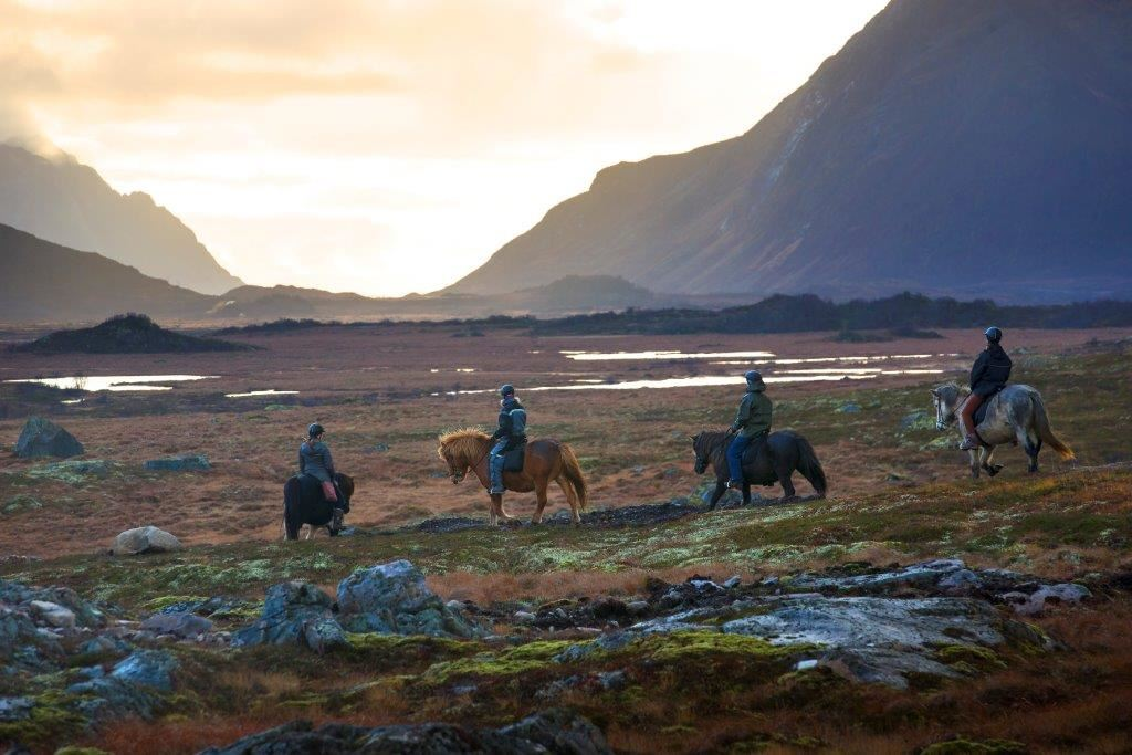 Viking Tour - Horsebackriding on Icelandic Horses in Lofoten