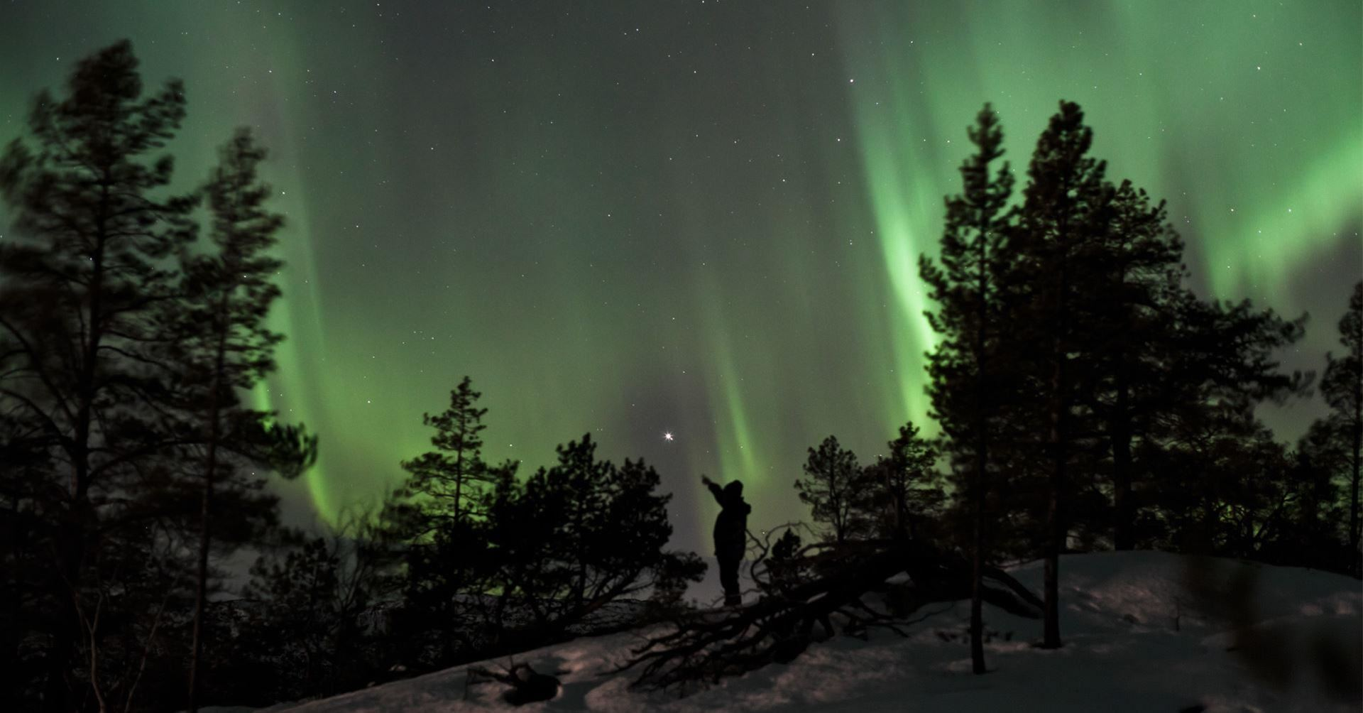 © Sollia Gjestegård, Northern Light at Borealis Camp