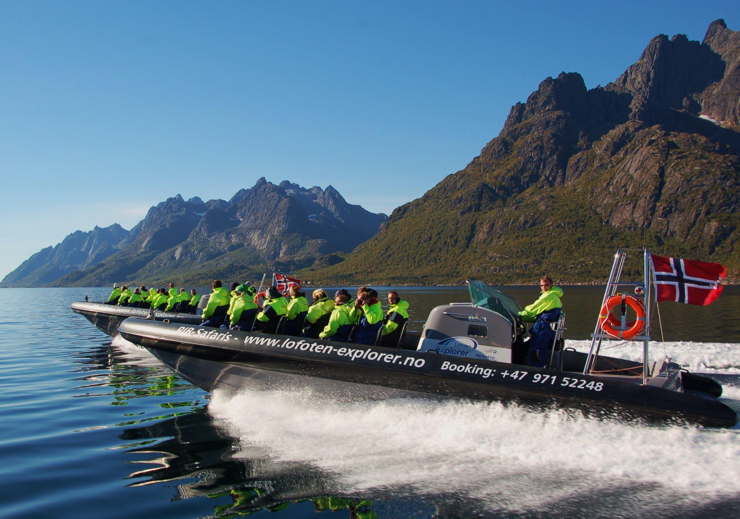 Trollfjord & sea eagle RIB-safari