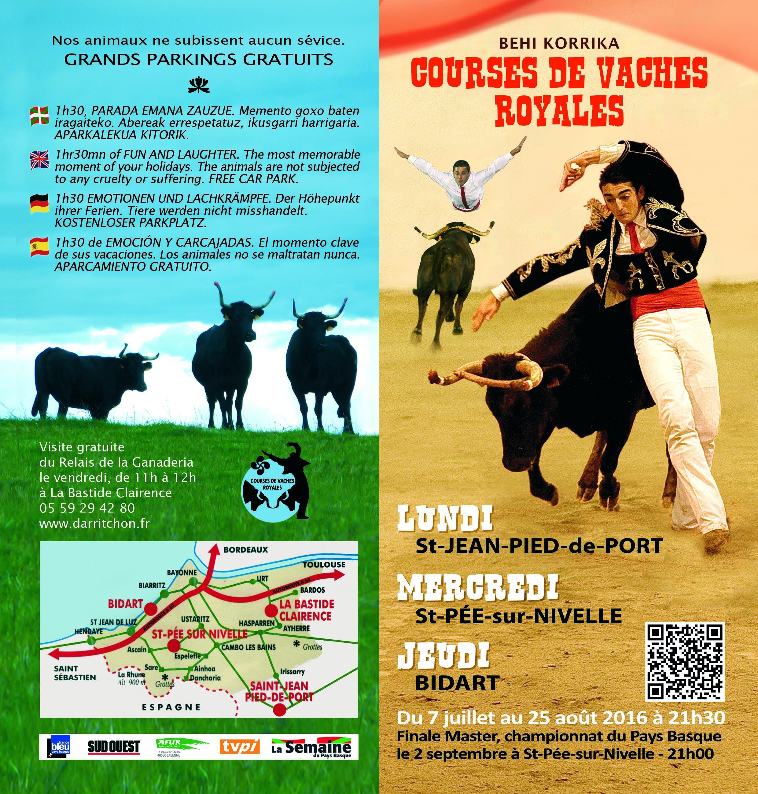 Activité Courses de vaches royales à Bidart