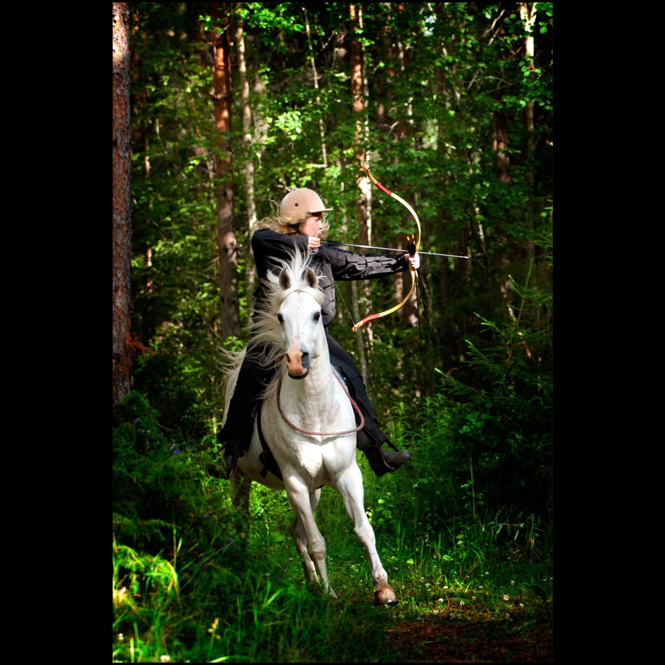 Dalecarlian Horse Adventures