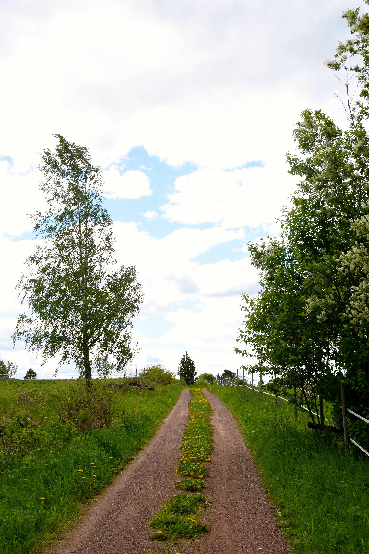 Ove Hållmarker, Cultural trail Sollerön