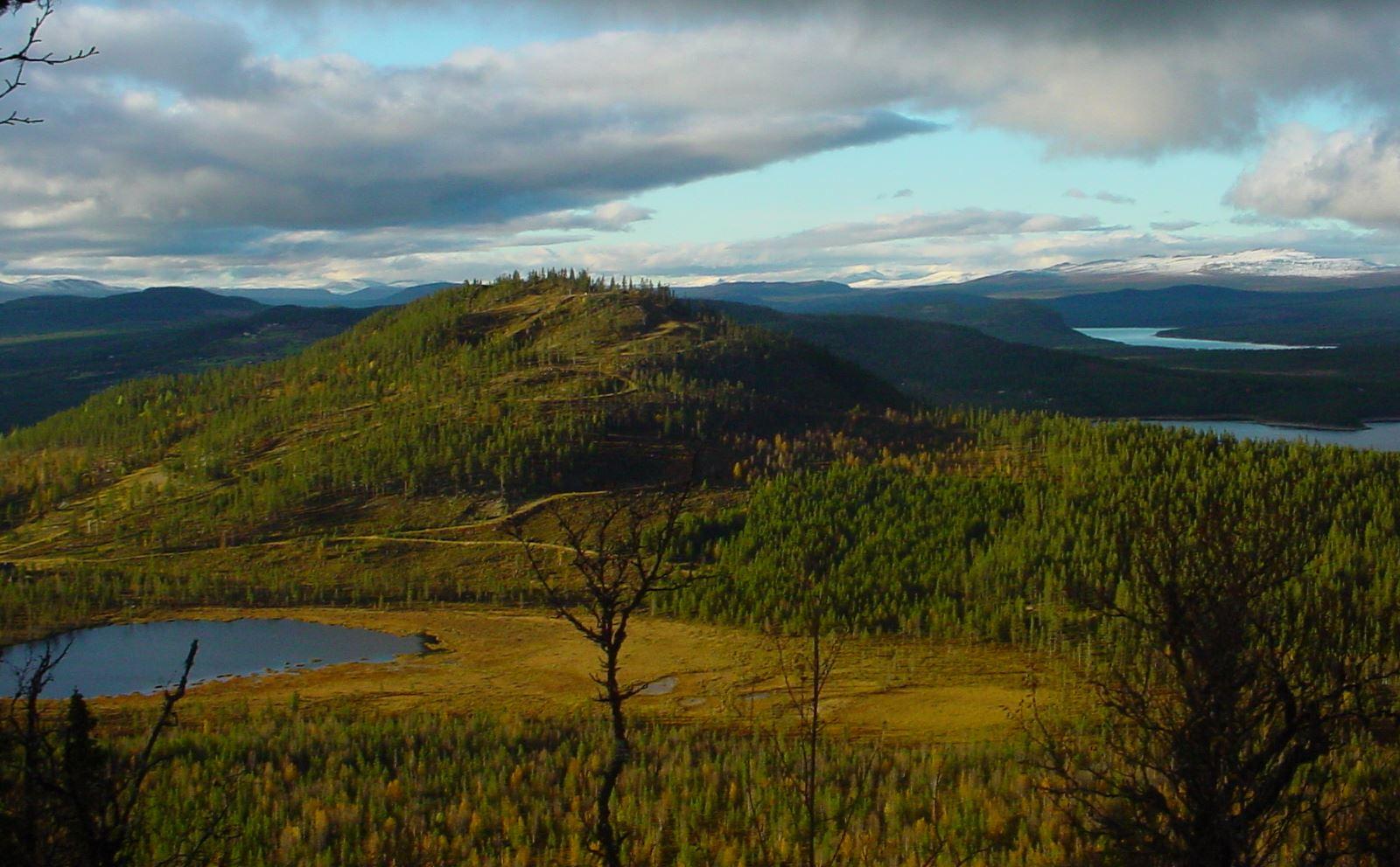 Tännäskröket/Camping
