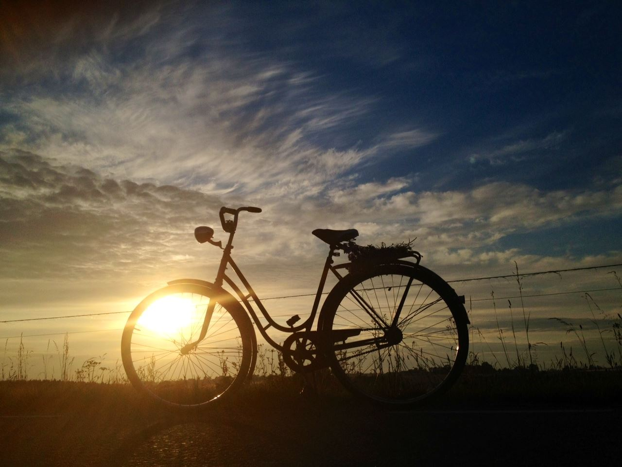 Johanna Stjernfeldt, Invigning Sydkustleden - Sveriges tredje nationella cykelled