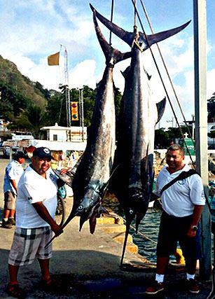 Pesca Deportiva Mayor
