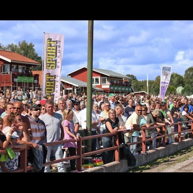 Dalatravet Rättvik - Market trotting