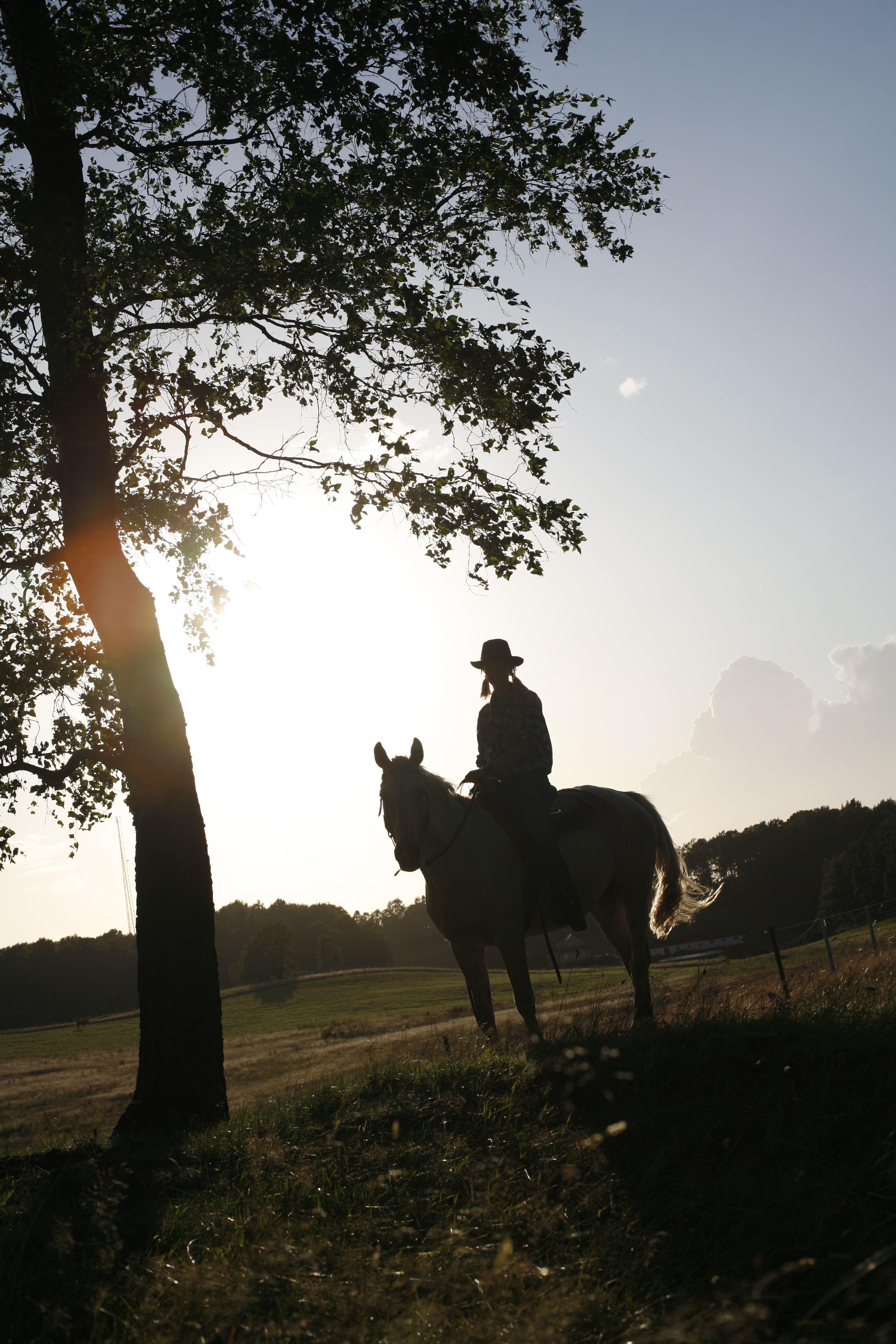 © Ängarnas Ranch, Ängarnas Ranch