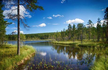 Hans_Göran Gulliksson, Guidad tur i Jämtgavelns naturreservat