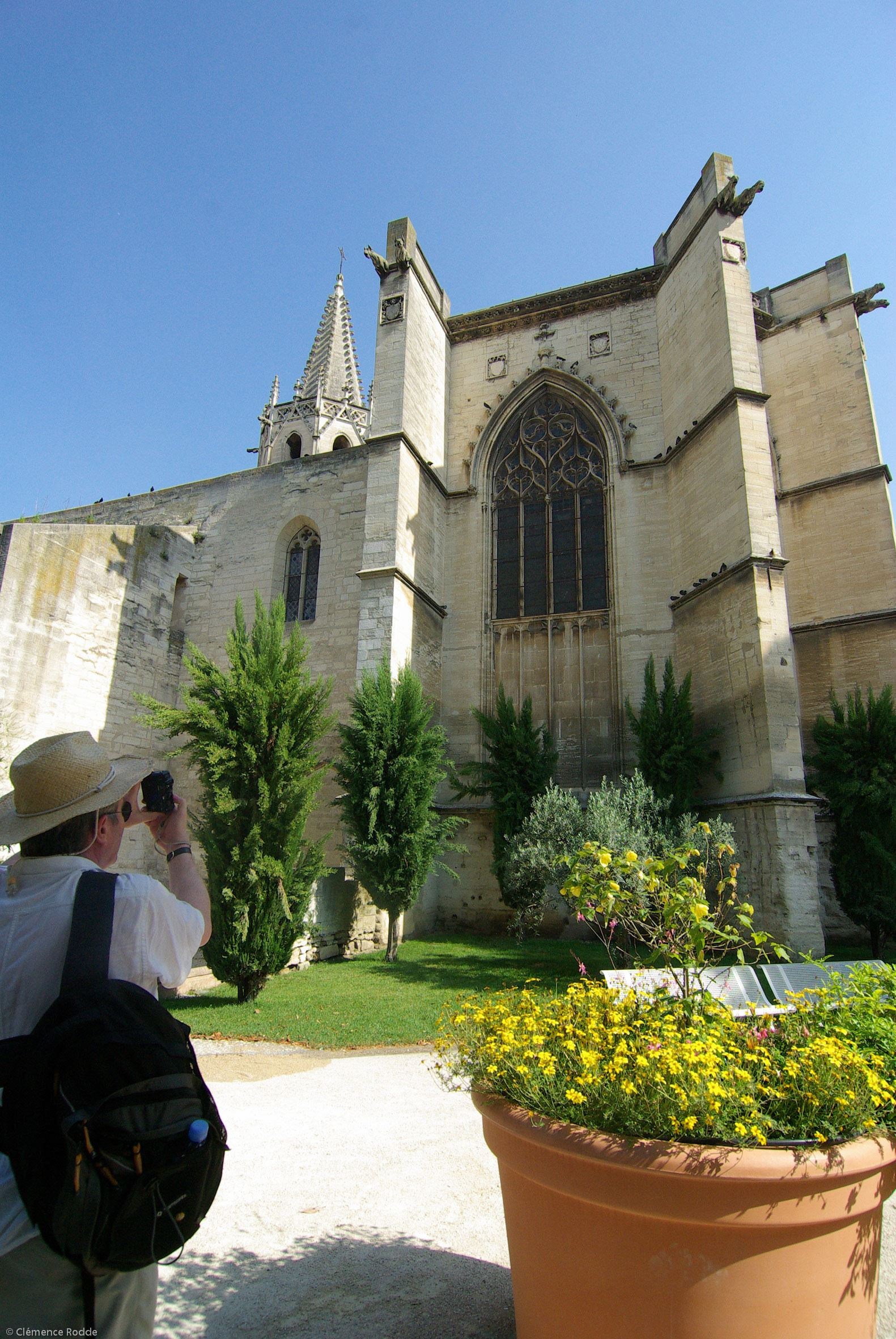 Avignon – life is great