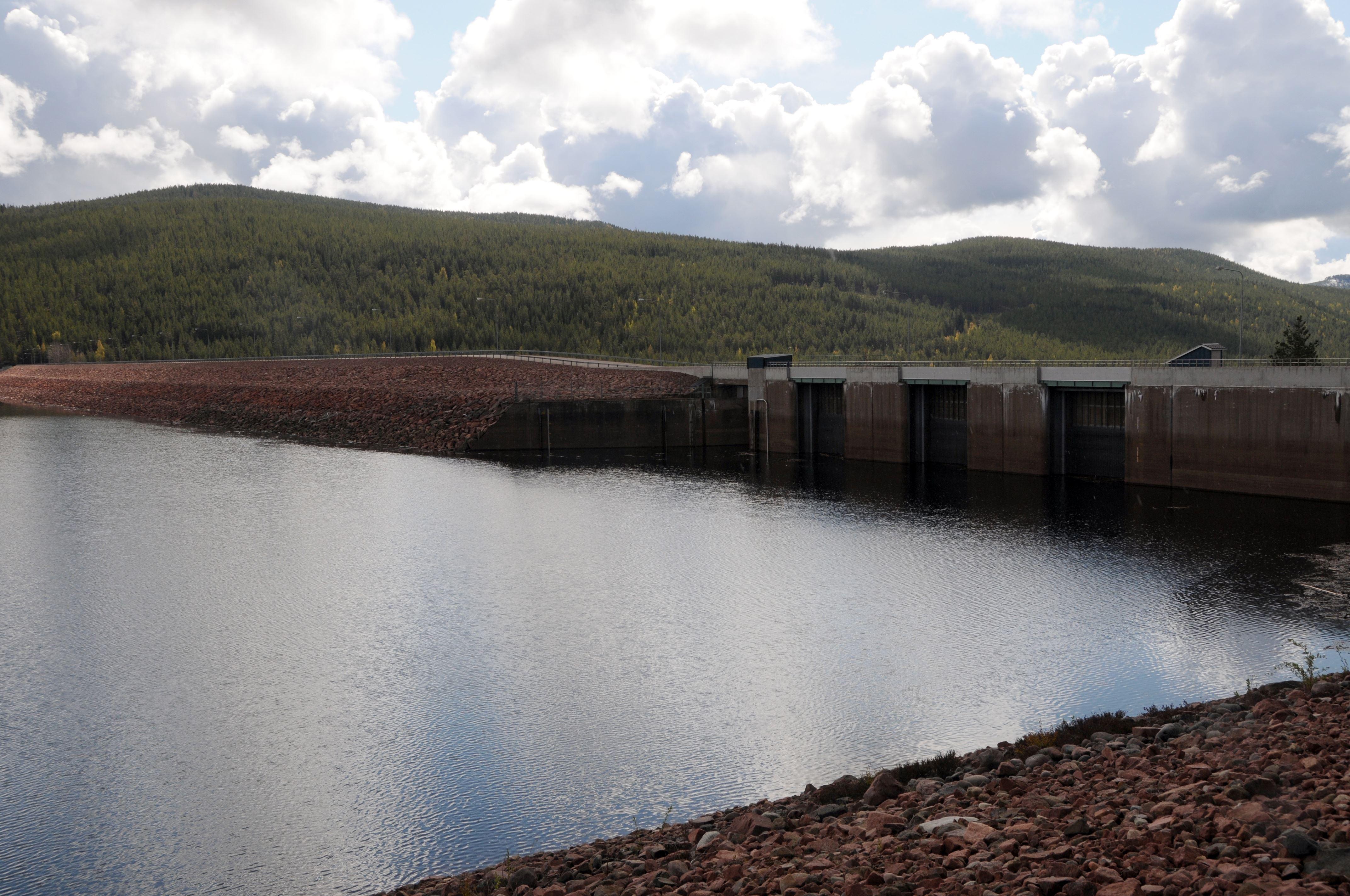 Trängslet dammen