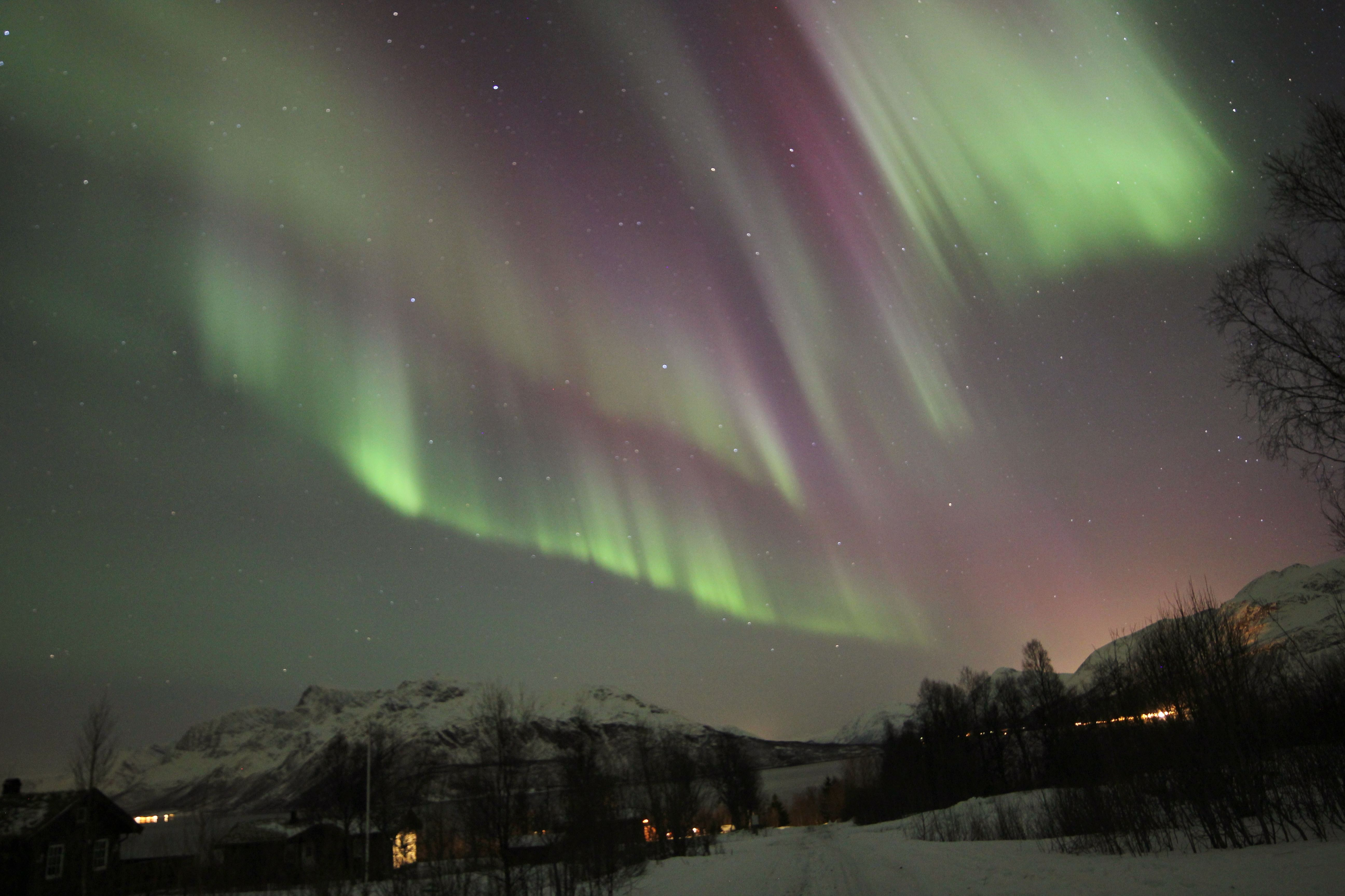 Northern Lights on the Edge of Tromsø – Aurora Alps