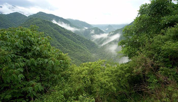 Manantlan Biosphere