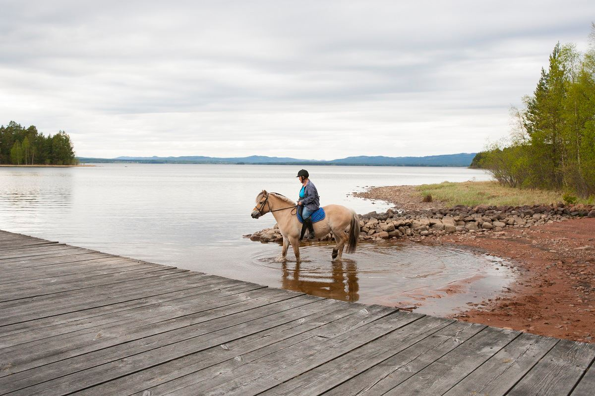 Kola Productions, Lindängets Gård - Turridning på fjordhästar