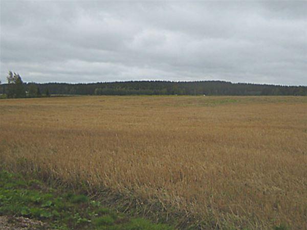 Tuulikannel | Ala-Heikkilän Loma-asunnot