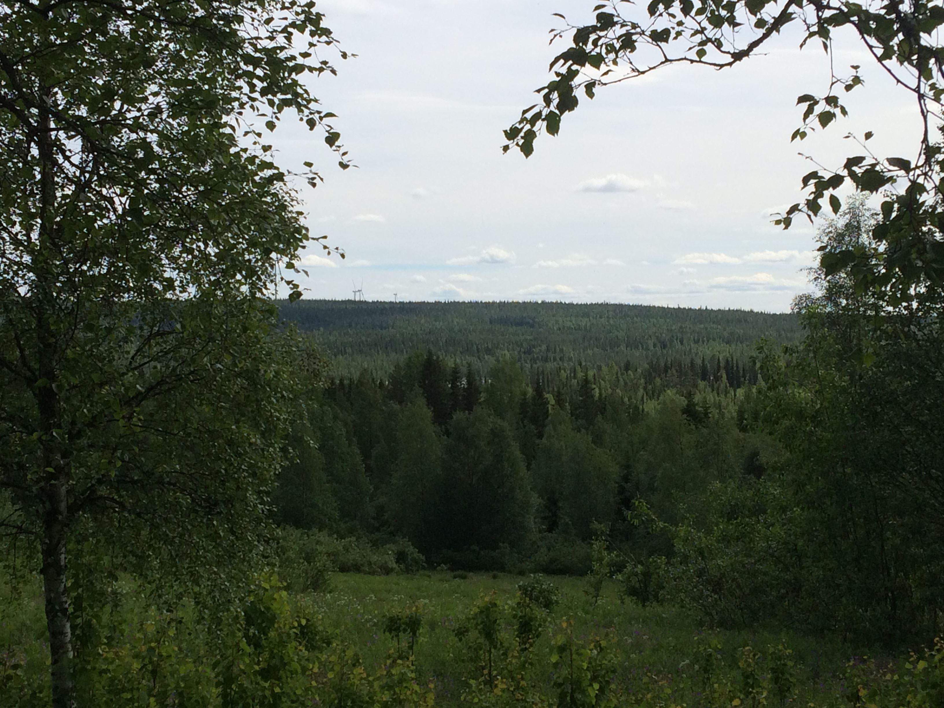 Rentjärnberg utsiktsplats