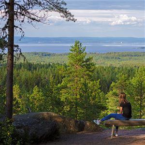 Lasse Arvidsson, naturum Dalarna, Siljansnäs