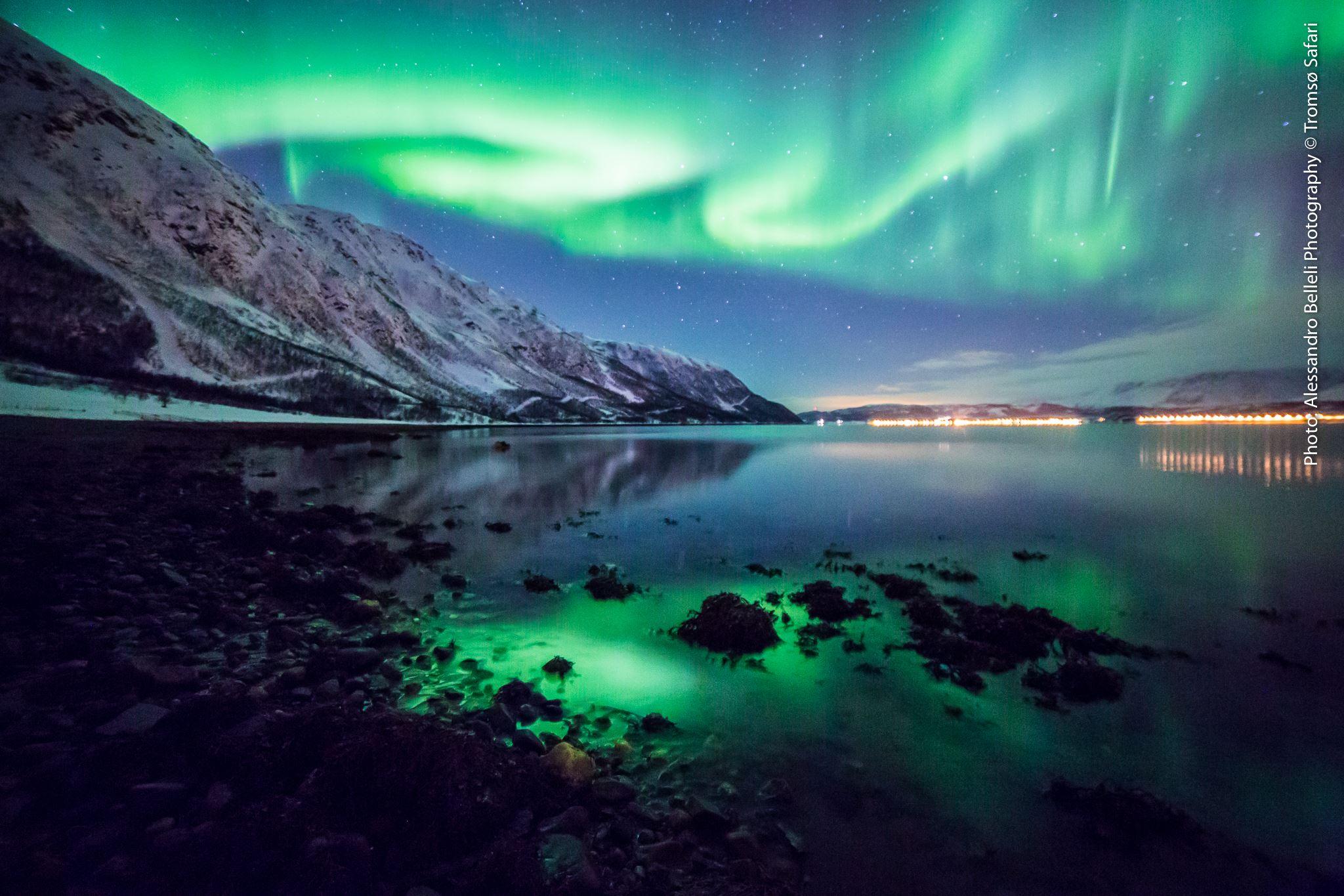 The Northern Lights Bus – Tromsø Safari