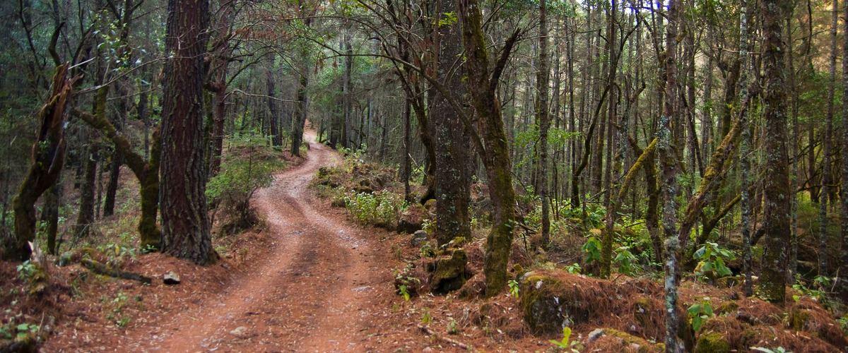 El Terrero (Reserva de la Biosfera de la Sierra de Manantlán)