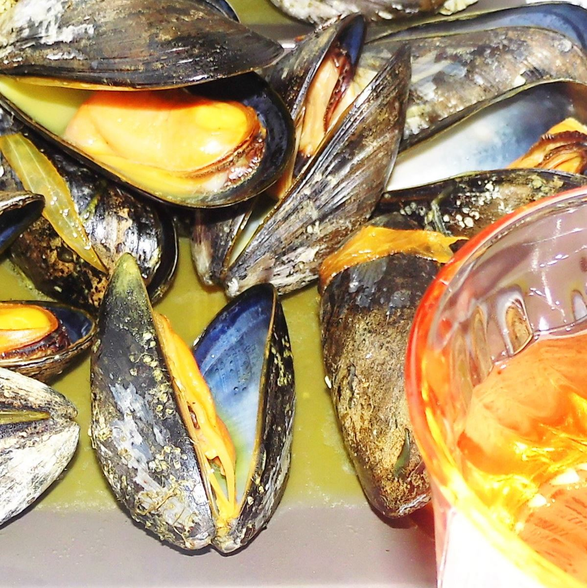 MOULES (blue mussels) à la granit - family kayak tour 4 hrs (Book Online for best price)