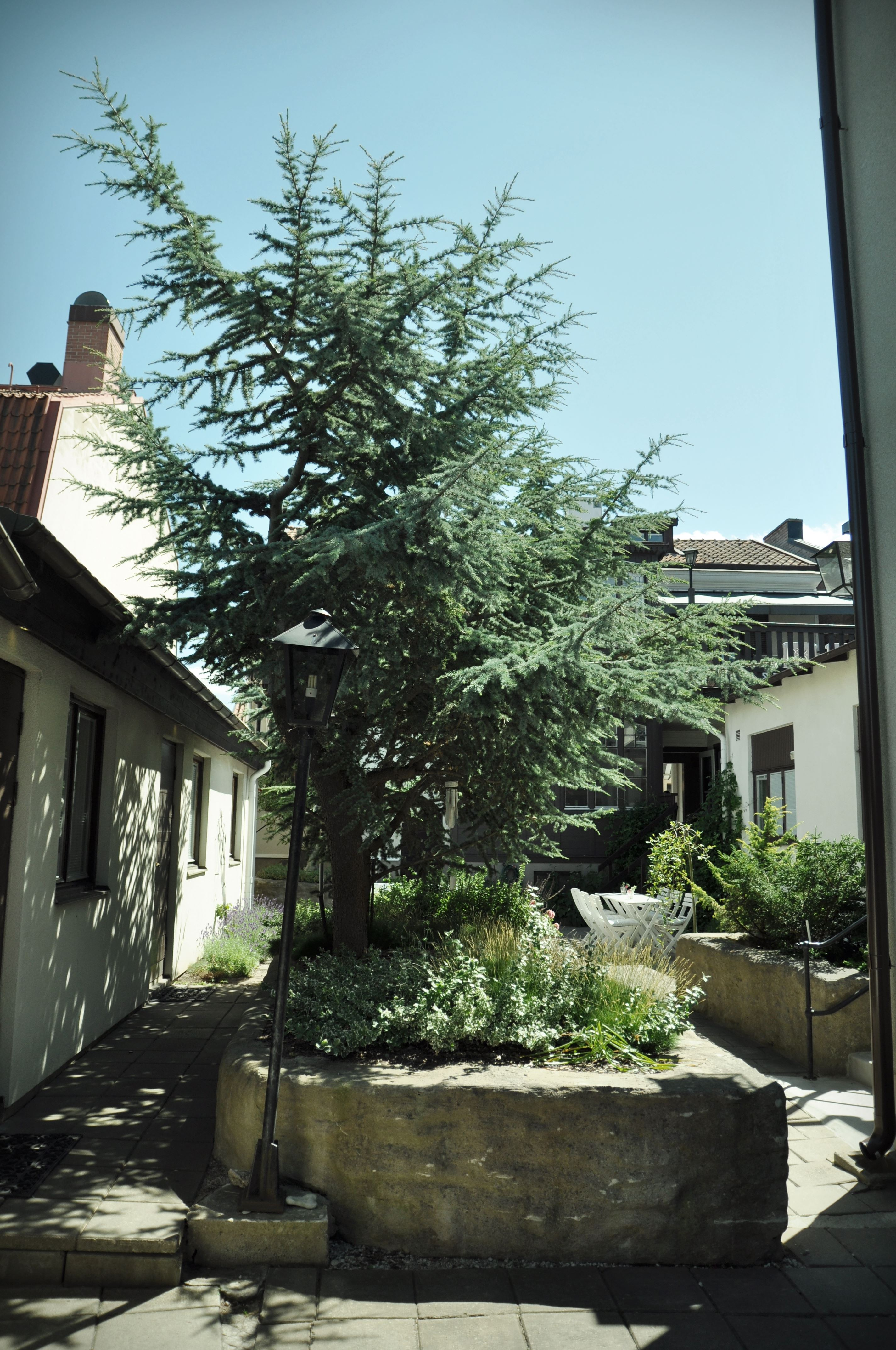 Hotell Villa Borgen