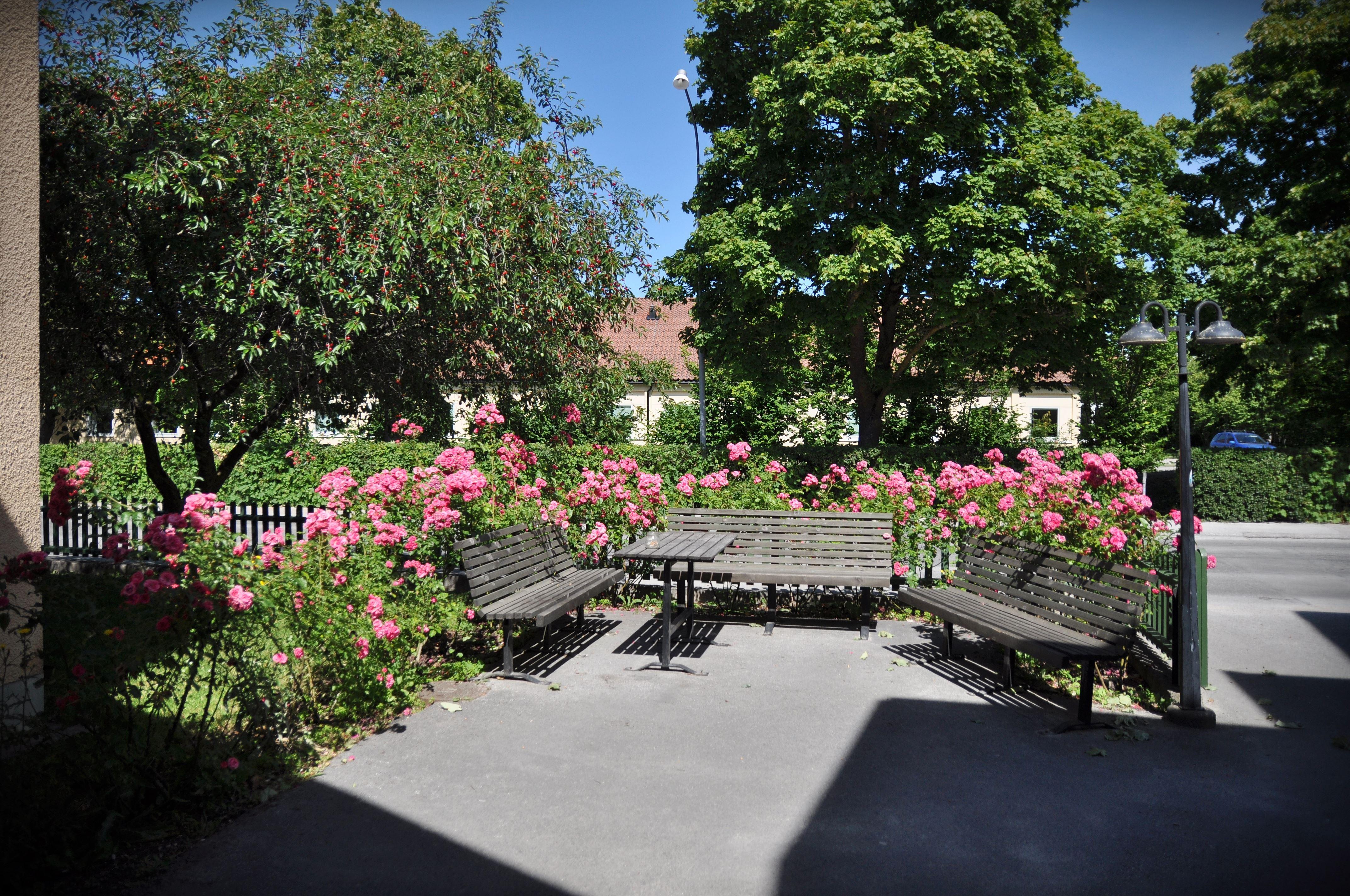 Birkagatan Vandrarhem