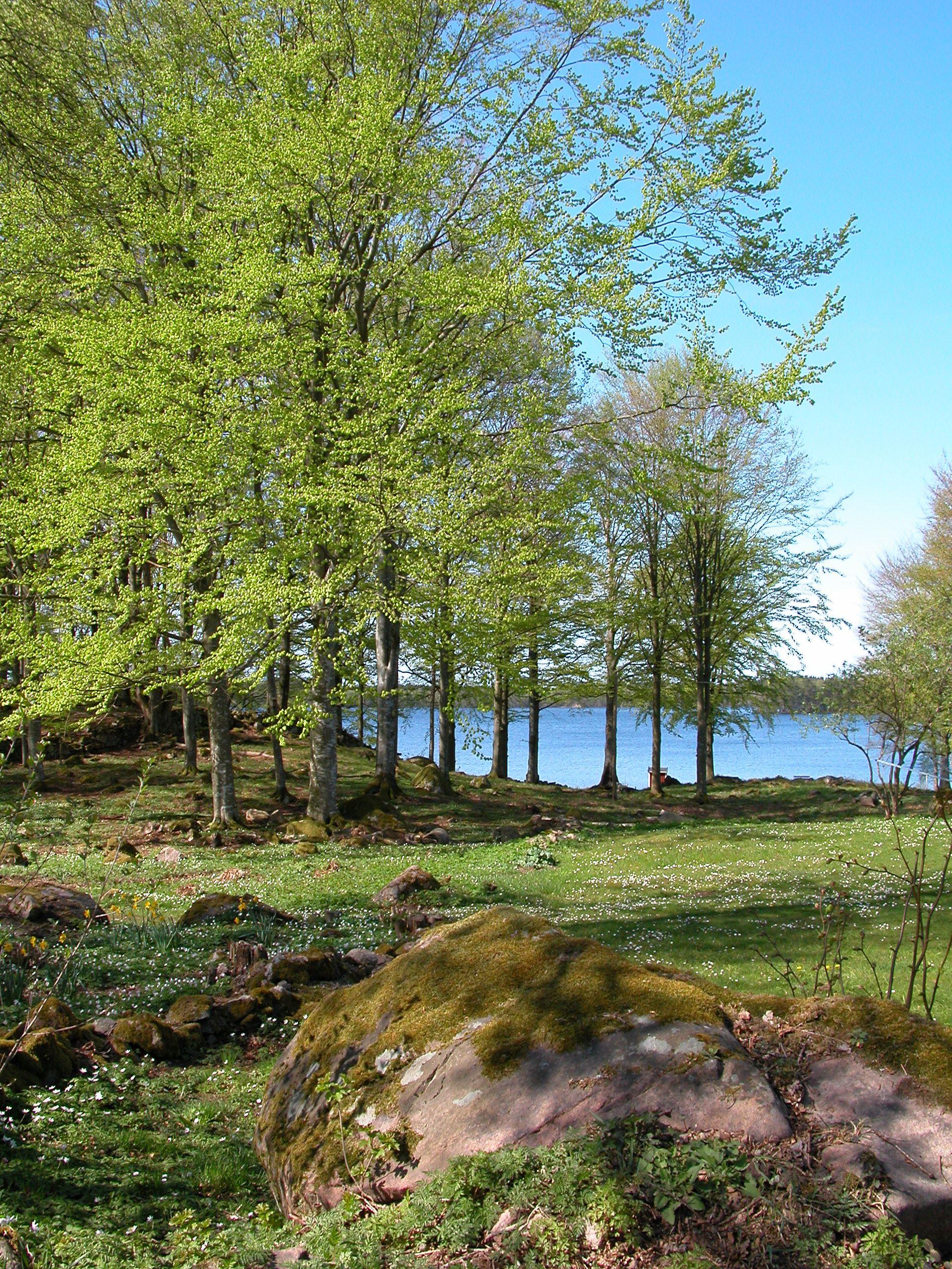 Kronan and Möckelsnäs nature reserve