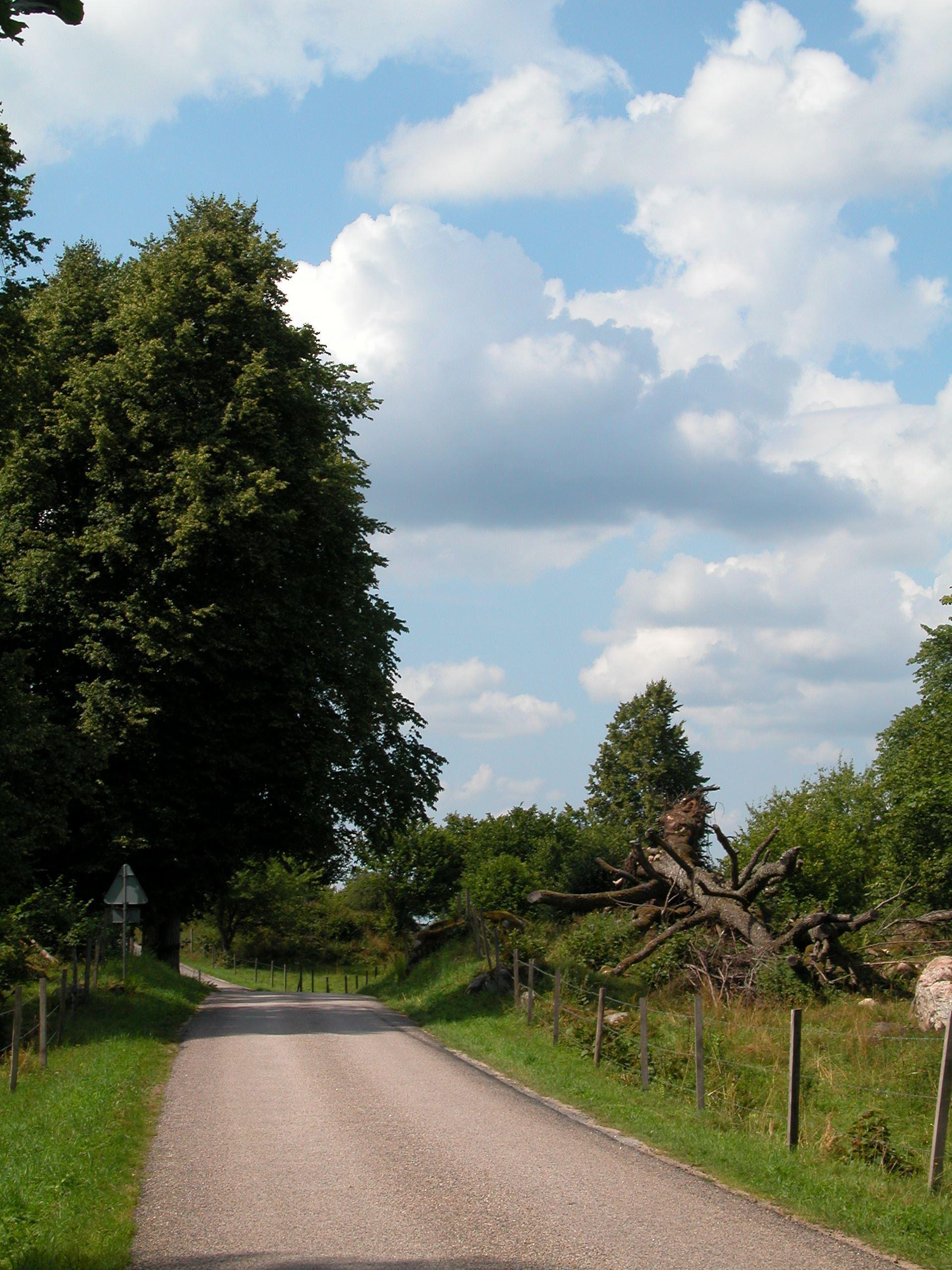 Taxås Naturreservat
