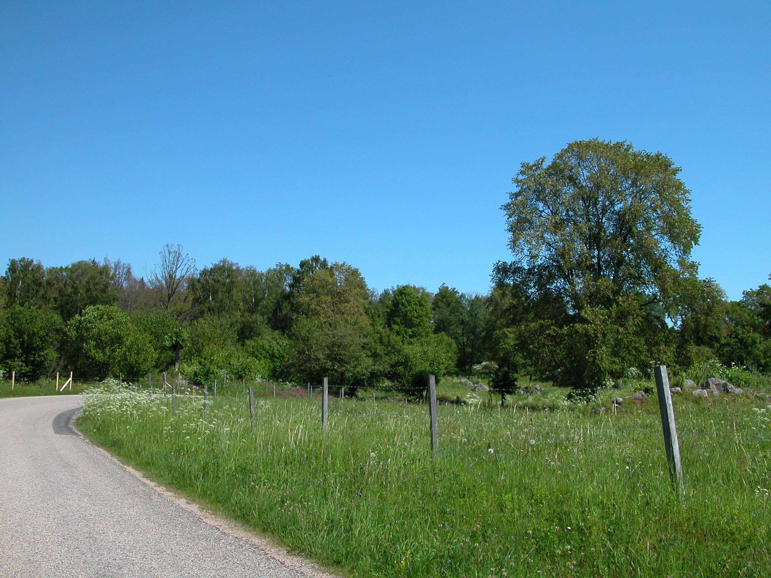 Taxås Nature reserve