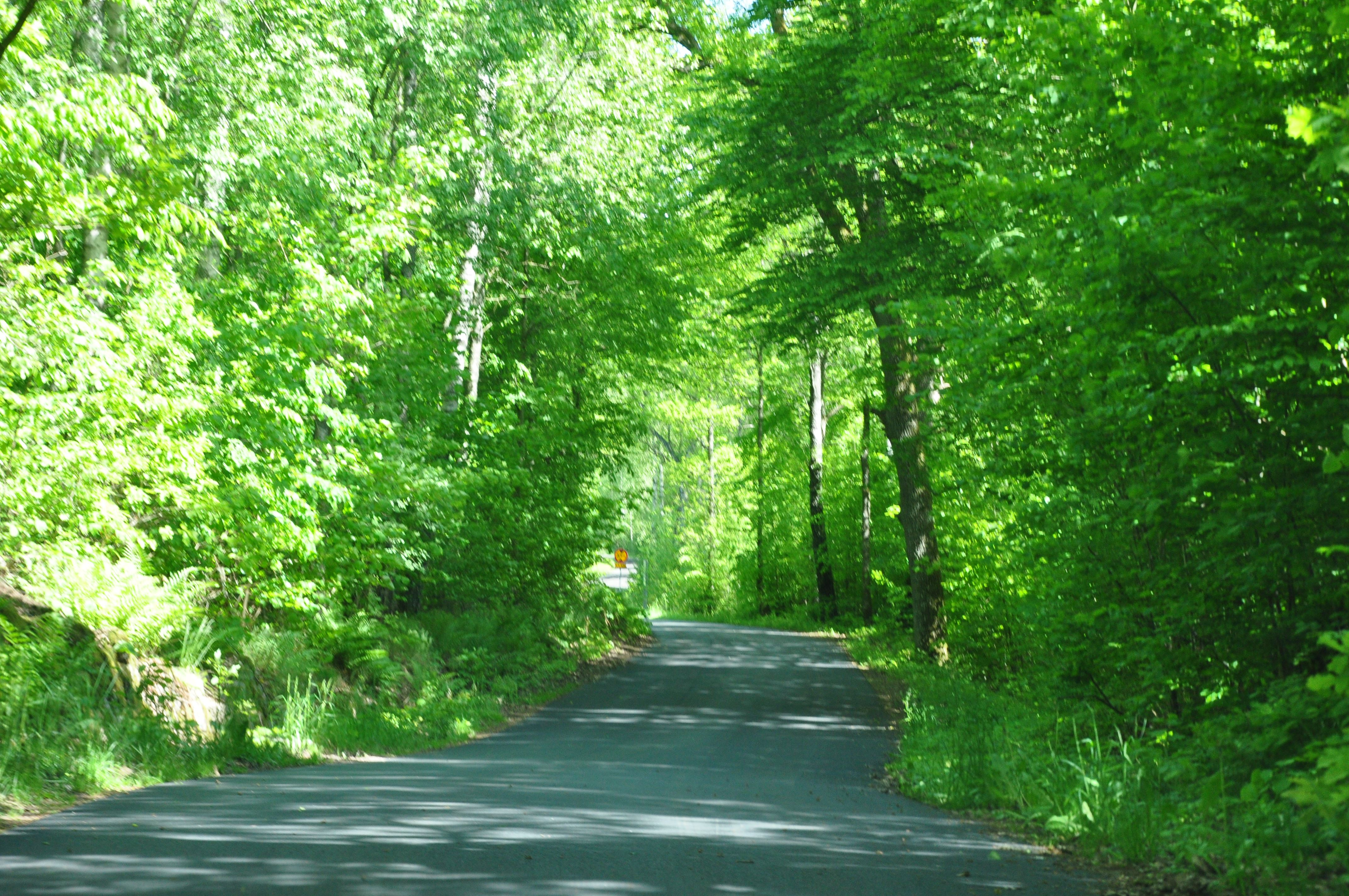 Walking-trail – Såganäs