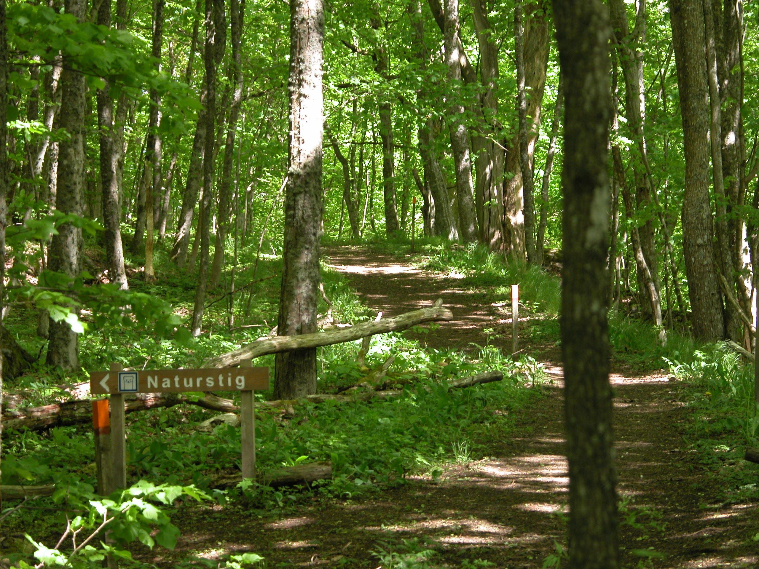 Walking-trail – Nature reserve Kronan